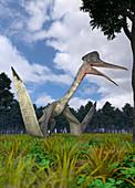 Quetzalcoatlus by trees, illustration