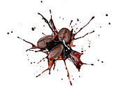 Coffee beans colliding with liquid coffee, illustration