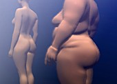 Healthy woman and obese woman, illustration