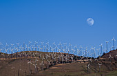 Wind farm, Tehachapi, California, USA