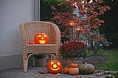 Halloween-Arrangement mit Kürbissen, Chrysantheme und Fächerahorn