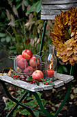 Basket of apples and candle lantern on old garden chair