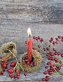 Sweet chestnut case used as candle holder decorated with rosehips