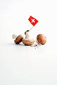 Mushrooms for Züricher Geschnetzeltes (veal ragout in a creamy sauce originating from Zurich)