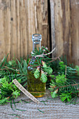 A bottle of spruce sprout liqueur