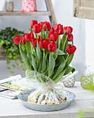Tulipa 'Seadov'