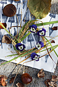 Sweet chestnuts and wreath of violas and grass on Japanese paper