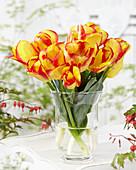 Tulipa 'Outbreak'
