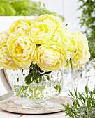 Tulipa 'Bowl of Beauty'