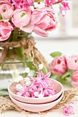Duftende Hyazinthen-Blüten und Schleierkraut in Schale