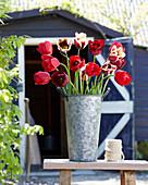 Tulpenstrauß in Zink-Vase