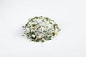 Selbstgemachtes scharfes Petersilien-Salz für Grillfleisch, Salatsaucen und Gemüsegerichte