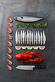 Mackerel, sardines, lobster and prawns