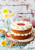 Classic Vanilla Sponge Cake filled with jam and cream