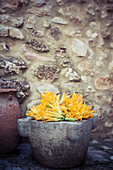 Courgette flowers in a stone pot