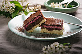 Veganer Blechkuchen aus Vanille-und Schokoboden, Sauerkirschen, Sauerkirschcreme und Zartbitterglasur