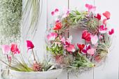 Kranz aus Tillandsien und Alpenveilchen Blüten