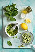 Ingredients for broad bean pesto