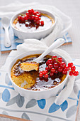 Yoghurt creme brulee with redcurrants