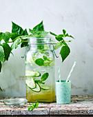 Flavoured Water mit Holunderblüten, Minze und Gurken