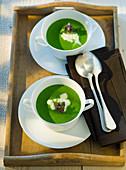 Ramson nettle soup