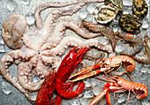 Stilleben mit verschiedenen frischen Meeresfrüchten
