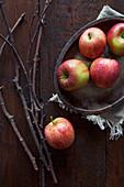 Stilleben mit frischen roten Äpfeln