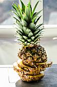 Fresh pineapple, sliced