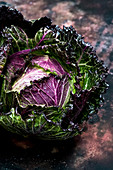 Still life, a fresh round green savoy cabbage with purple red leaves