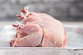 Fresh raw chickens