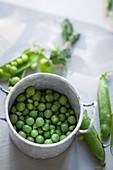 Fresh peas in a metal pot