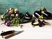 Auberginen in verschiedenen Formen und Farben