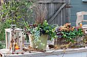 Herbstliches Arrangement mit Johanniskraut Magic Marbles 'Ivory', Purpurglöckchen, Efeu und Segge