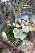 Moos-Herz mit Blüten von Christrose und Schneeglöckchen