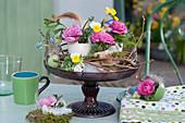 Osterdekoration mit Sträußchen aus Ranunkeln, Hornveilchen und Traubenhyazinthen in Eierschalen als Vasen
