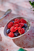 Fresh forest berries in a small bowl