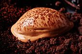Melting chocolate ice cream