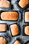 Mini white bread loaves in tins