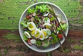 Blattsalat mit Thunfisch und Ei