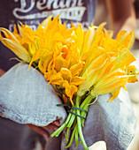 Hände halten gebündelte Zucchiniblüten