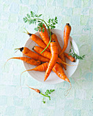 Fresh carrots in a bowl