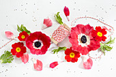 Blüten Kollage aus Primelblüten und Kronen-Anemone