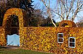 Herbstliche Buchenhecke mit Fenster und Gartentor (Kreislehrgarten, Steinfurt, Deutschland)