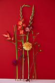 Blüten von Dahlien, Gladiolen, Heliconie und Kalla vor rotem Hintergrund