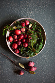 Red crab apples and conifer twigs in bowl