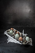 Various eggs in an egg carton