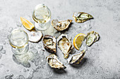 Close-up of half dozen of fresh opened oysters and shells with lemon wedges, two glasses of white wine or champagne
