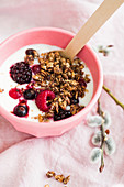 Crunchy muesli with yoghurt and berries