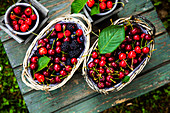 Fresh organic cherries, blueberries and blackberries in baskets on a wooden table