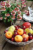 Fruit bowl with summer fruits and potted nemesia flowers